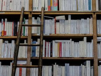 Beitragsbild - Bibliothek mit Leiter